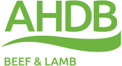 AHDB Beef and Lamb - Member of RUMA