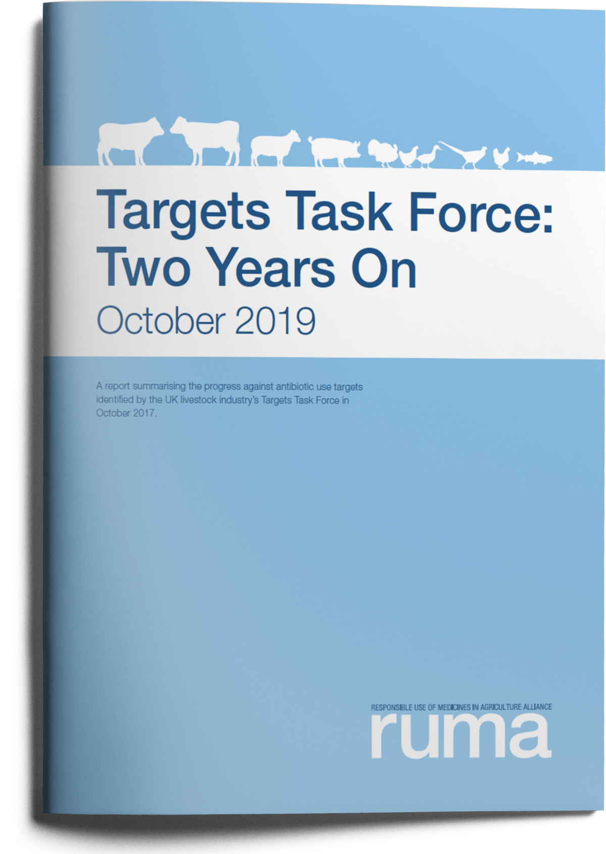 RUMA Targets Task Force Report 2018 Two years on