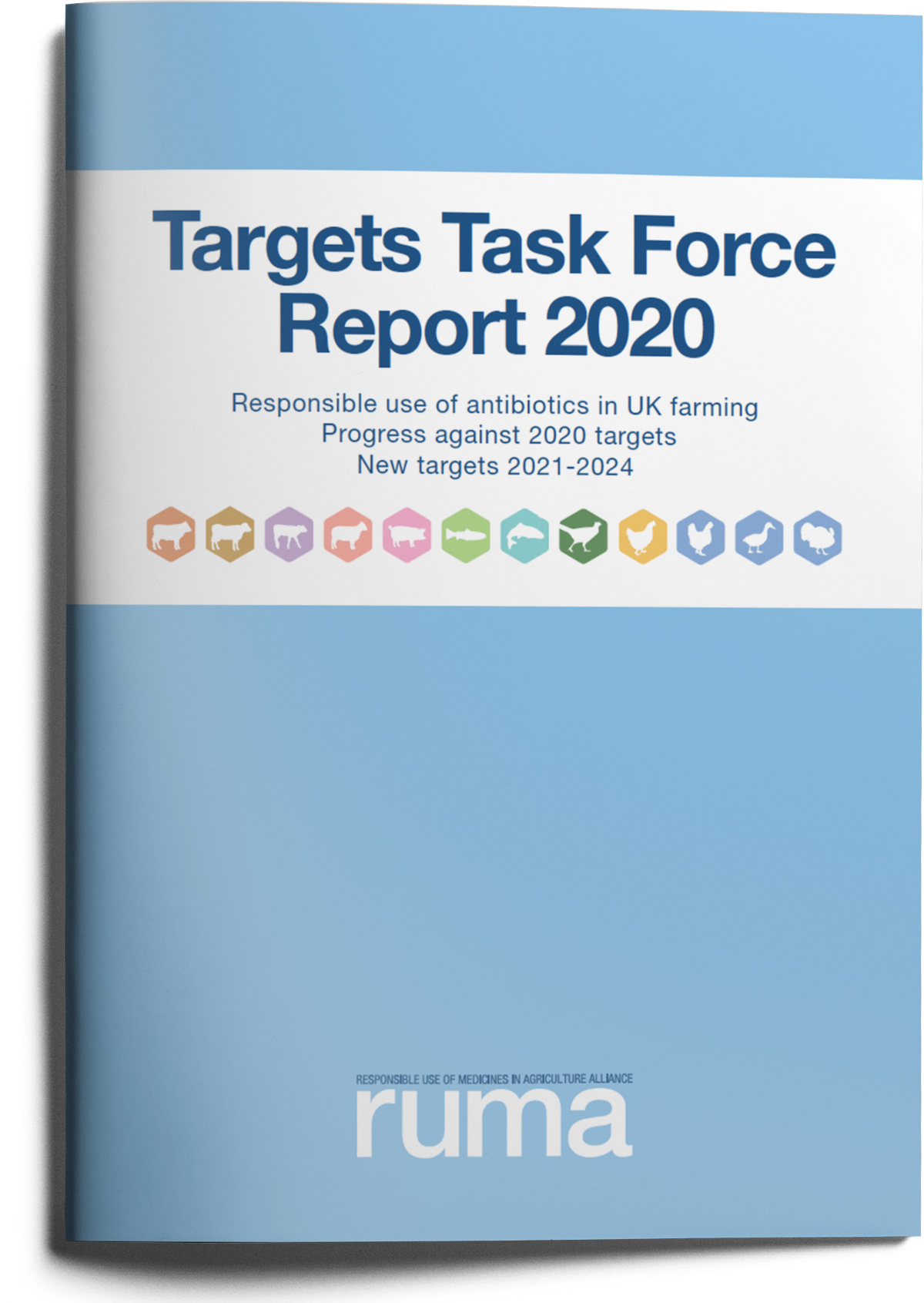 RUMA Targets Task Force Report in Full