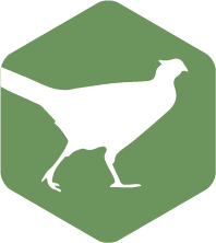 RUMA Gamebirds icon