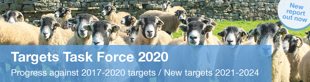 RUMA Targets Task Force 2020 - out now